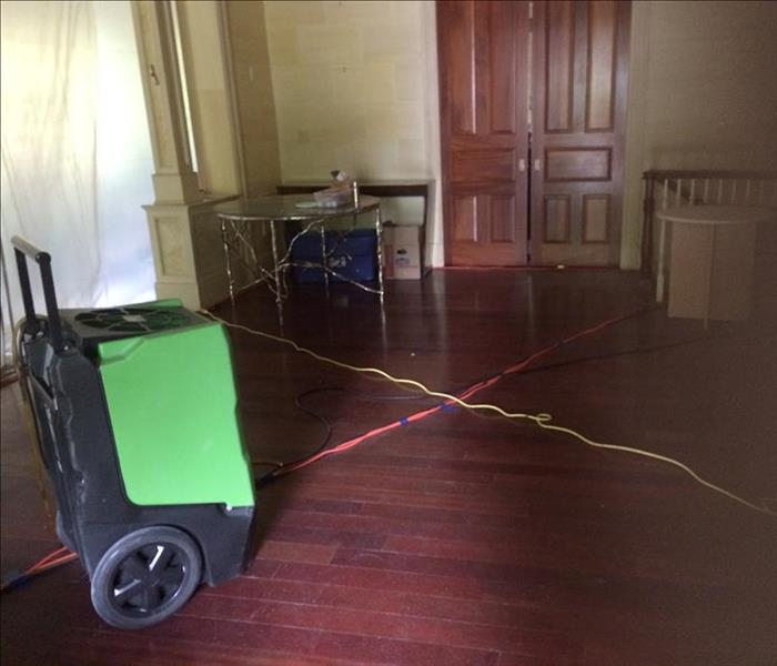 Water Damage on Wood Floor in Harrison After