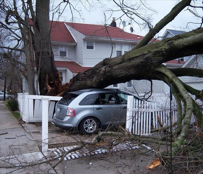 Storm Damage Preparing For Hurricane Season
