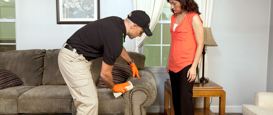 New Rochelle, NY carpet upholstery cleaning