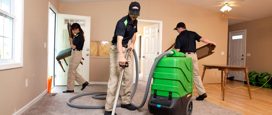 New Rochelle, NY cleaning services